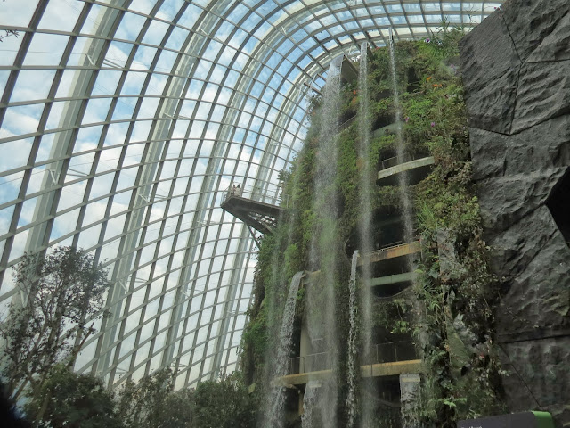 Gardens by the bay cloud forest waterfall
