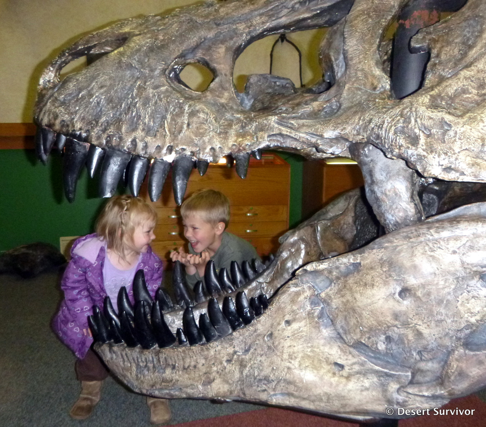 what is paleontology for kids