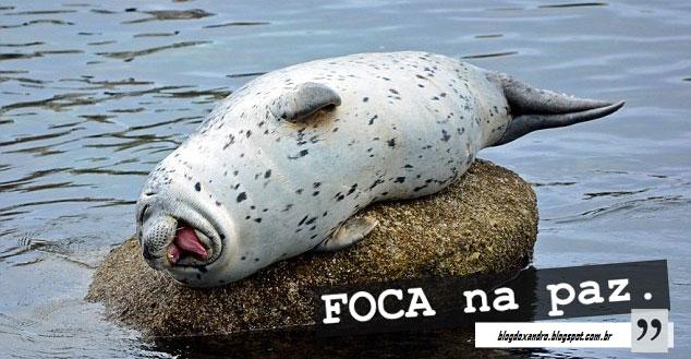 focapaz.png (634×329)