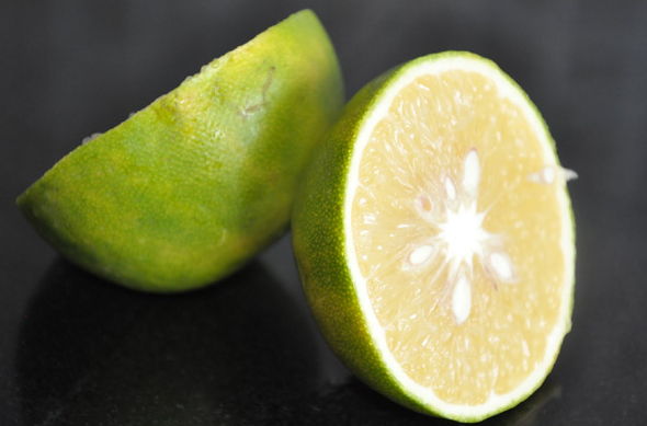 Sour And Sweet Citrus Limetta Fruit