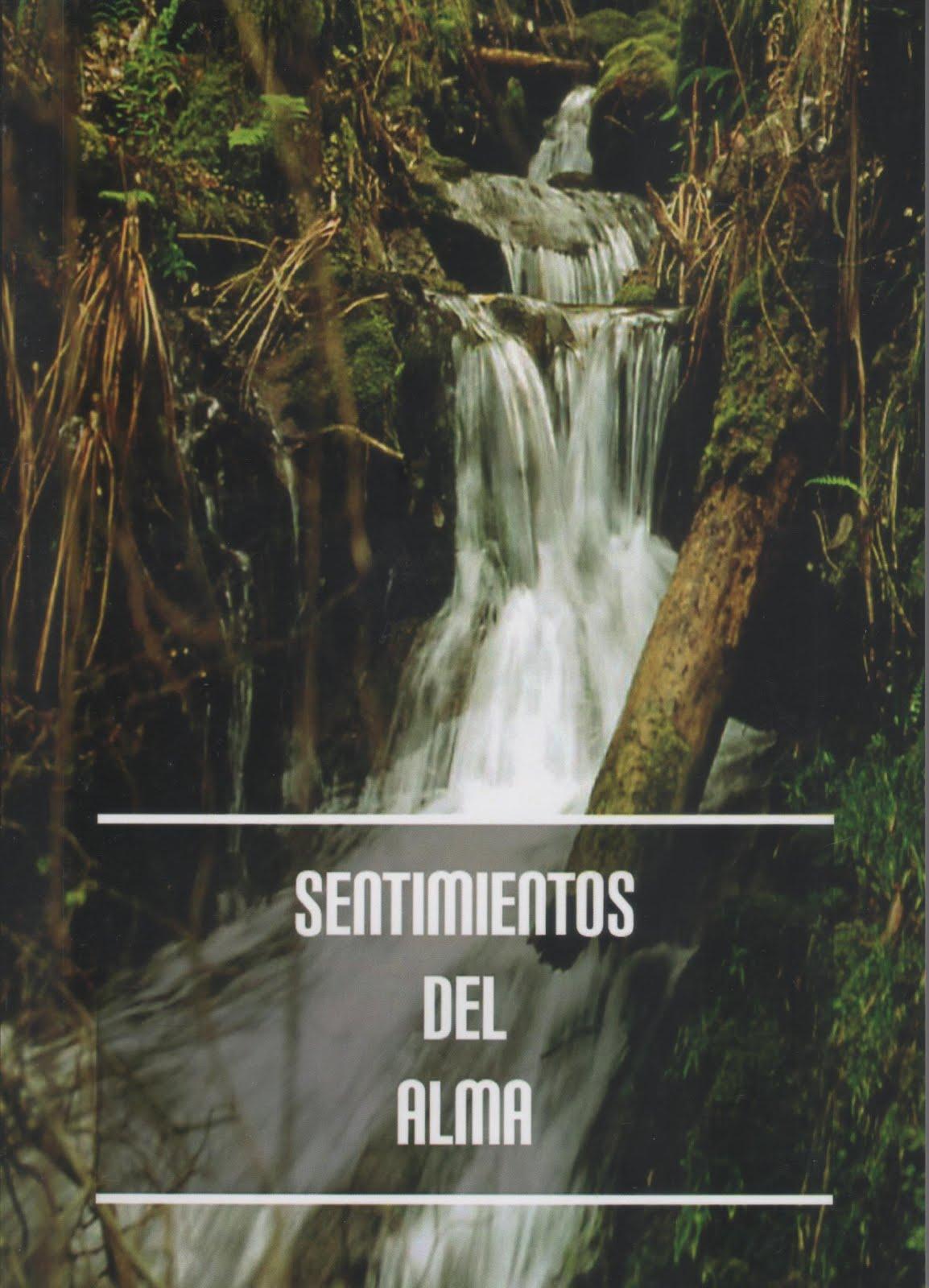 SENTIMIENTOS DEL ALMA 3º libro