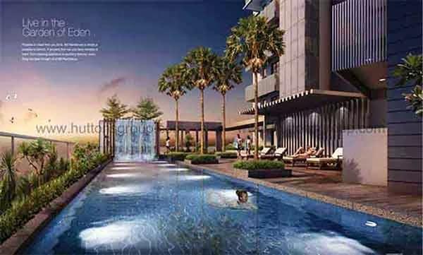 8M Residences Swimming Pool