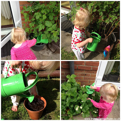 toddler watering plants