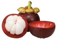 obat asam urat herbal dan tradisional