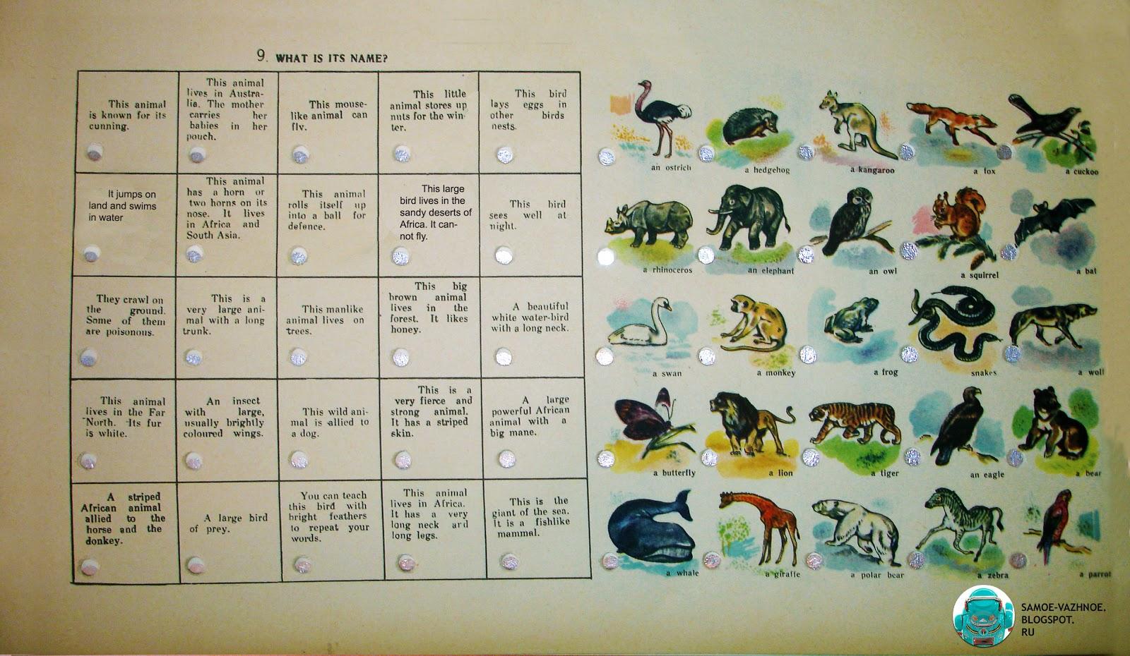 Детская игра английский язык