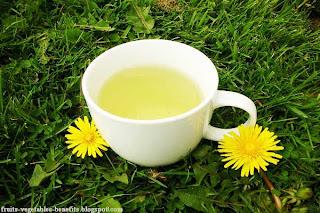 dandelion_tea__fruits-vegetables-benefits.blogspot.com(health_benefits_of_drinking_dandelion_tea)