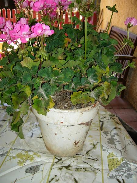 Taburete alto hacer bricolaje es for Bricolaje para jardin