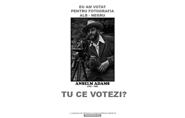 the art student vote campaign university of arts iasi art students initiatives ansel adams