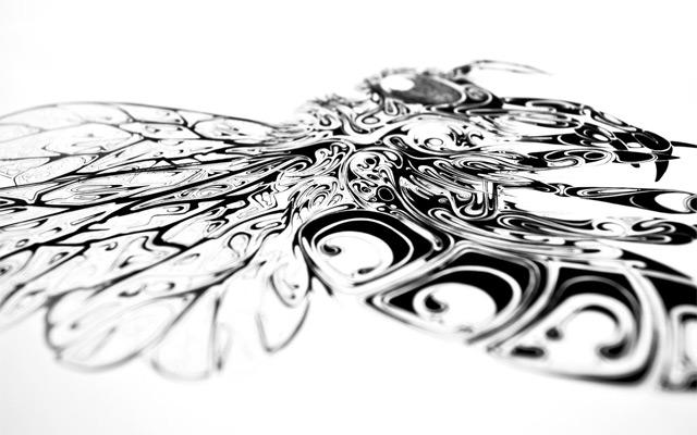 Чернильные иллюстрации Сая Скотта