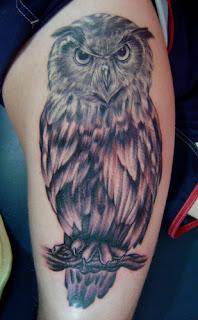 imagens de Tatuagens de Coruja