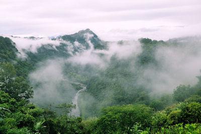 Una mañana fría con neblina en las montañas - Paisajes Naturales