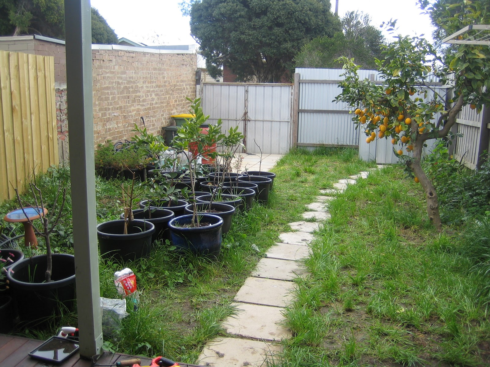 Three part plot permaculture design northcote for Permaculture garden designs