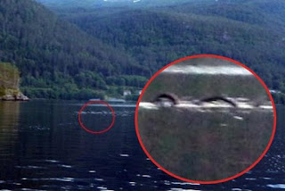 LA SERPIENTE DE HORNINDALSVTNET: Una criatura marina en Noruega La%2BSerpiente%2Bde%2BHornindalsvatnet