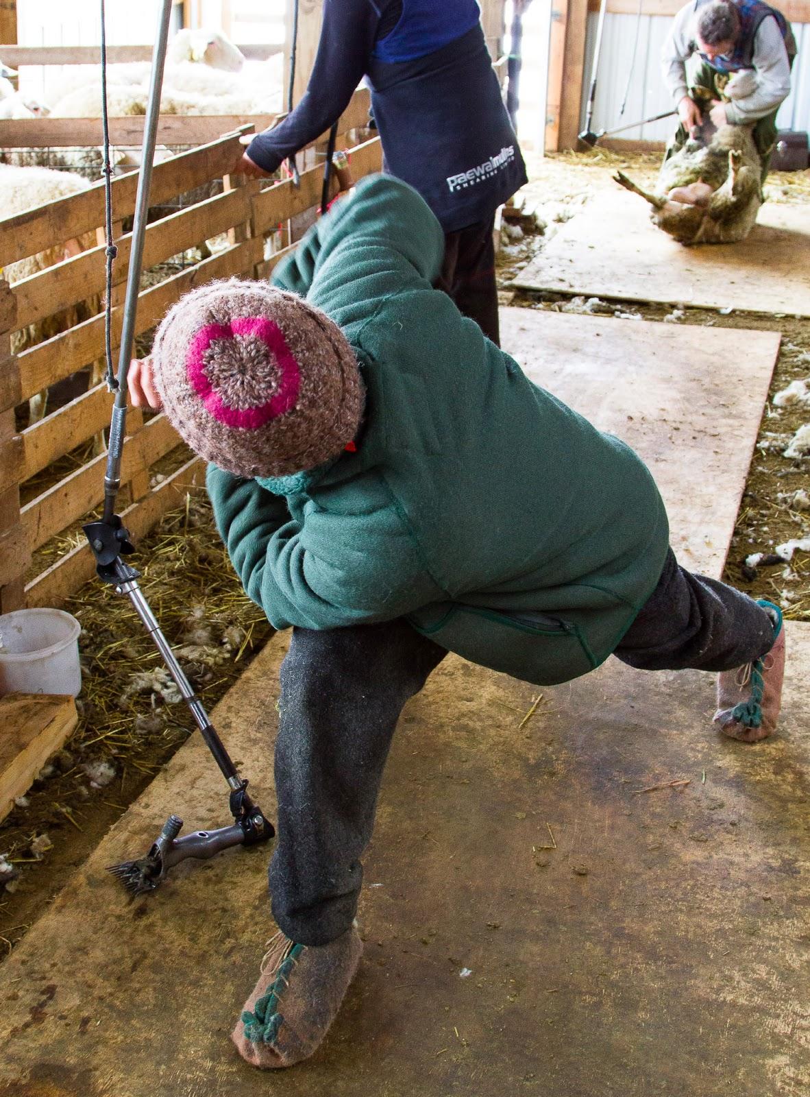 sheep springs guys Topsoil sheep springs, nm topsoil sheep springs, nm has the best topsoil prices in sheep springs, nm.