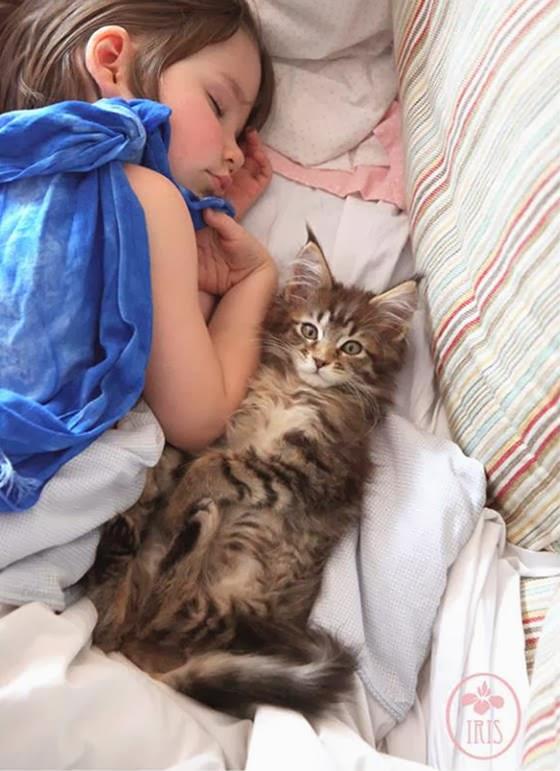 Foto Iris dan Thula tidur bersama lagi