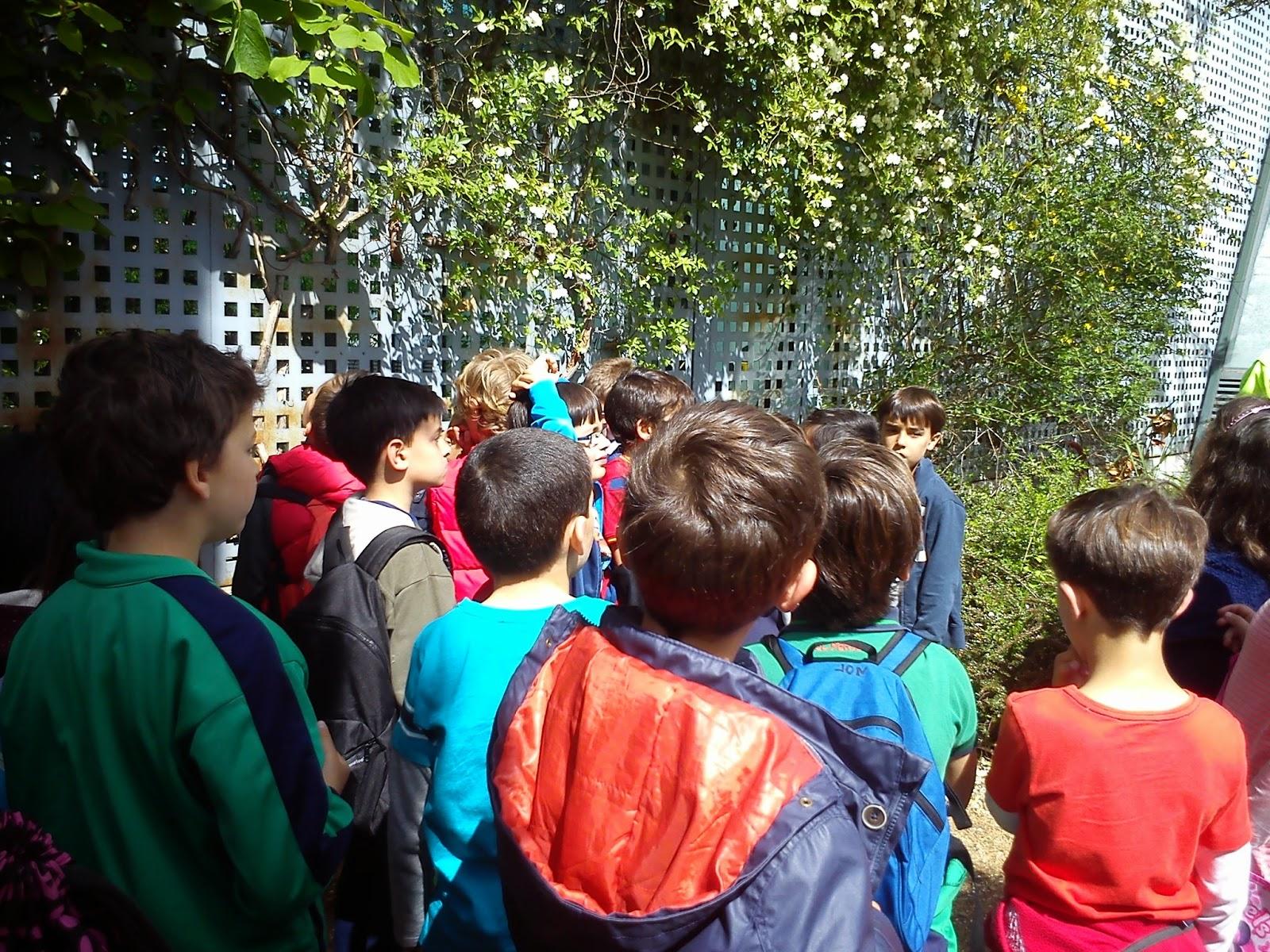 Los exploradores del peralworld jard n bot nico arroyo de for Informacion sobre el jardin botanico