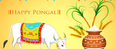 pongal 2016 HD images
