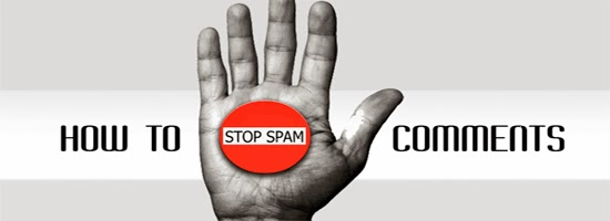 Stop Spam Comments