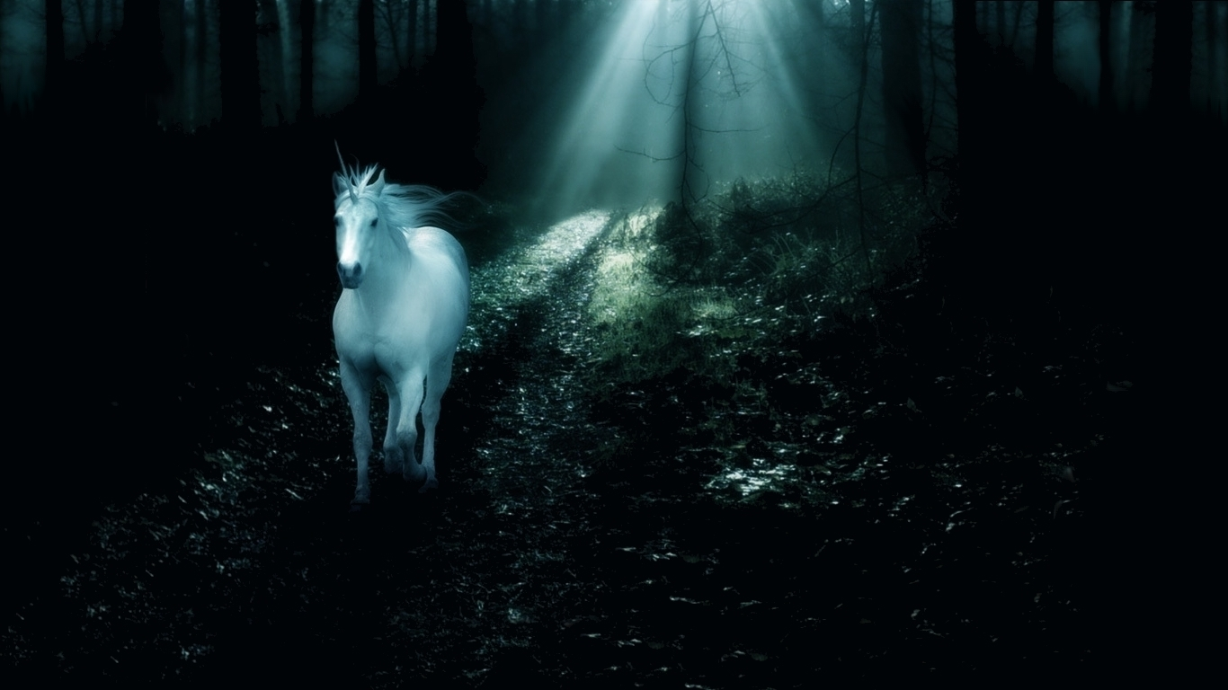Just walls unicorn wallpaper widescreen unicorn wallpaper voltagebd Images