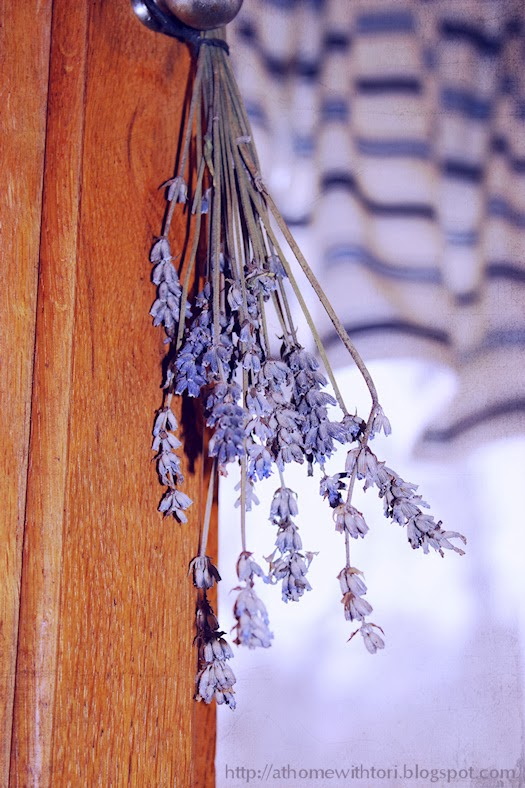 Dried Lavender Spray Photo by Tori Beveridge AHWT