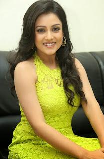 Actress Mishti Chakraborty Picture Gallery in Long Dress at Chinnadana Nee Kosam Audio Launch freshgallery.in2.jpg