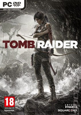 Tomb Raider 2013 Game PS