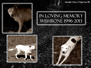 In memory of my dog Wishbone; So very camera shy, these are some of the few pictures I have of Wishbone. Night Sea 90.
