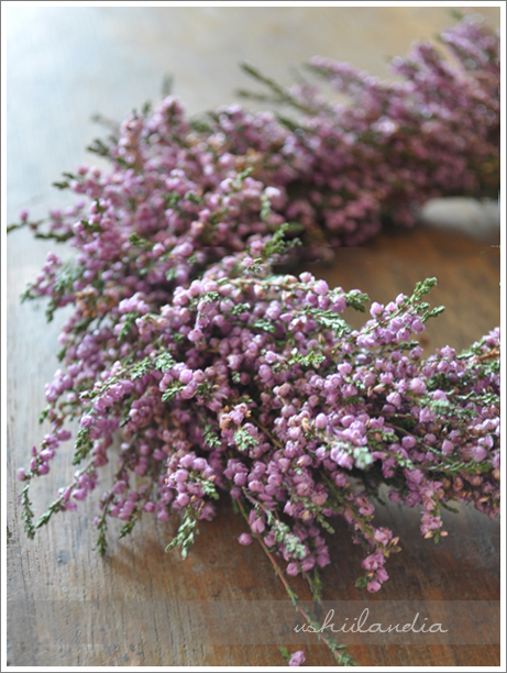 wianek z wrzosu / heather wreath