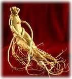 Ginseng - Makanan Penyubur Sperma