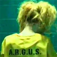 Harley Quinn Arrow