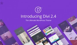The Smartest WordPress Theme on the Planet is Divi 2.4 : eAskme