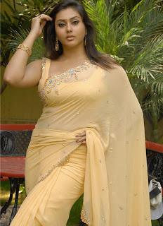 Namitha In Saree