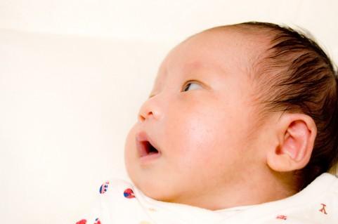 赤ちゃんファミリー応援フェア ... : 赤ちゃん 試供品 : すべての講義