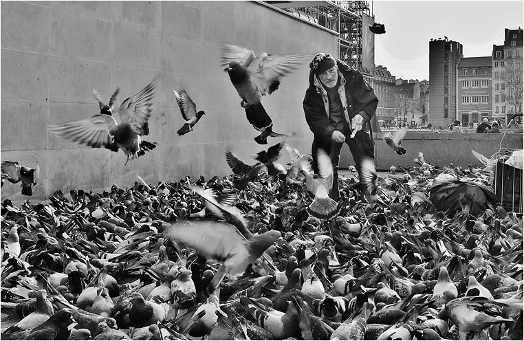 Compact Camera, Best Photo of the Day in Emphoka by Jérôme Bacharach, Fujifilm X20, http://flic.kr/p/jHnbdZ