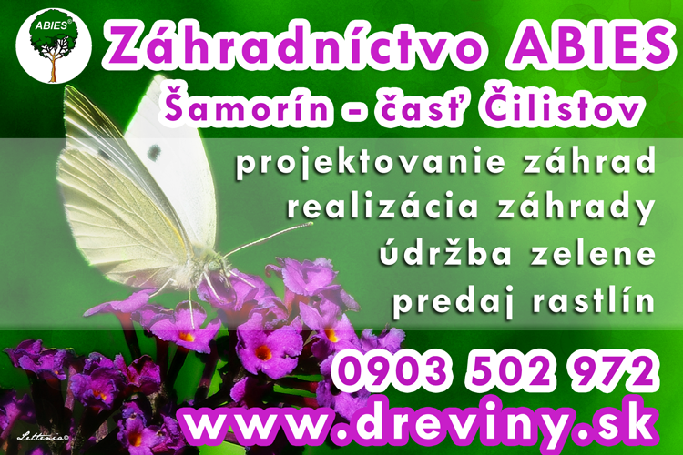 DREVINY.SK