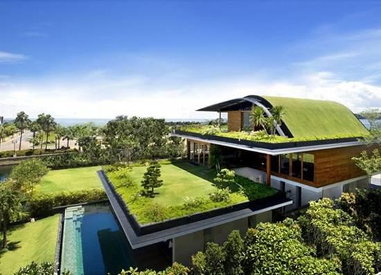 rumah-taman-hijau