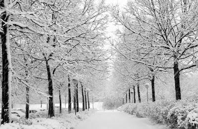 http://blogs.globeuniversity.edu/wp-content/uploads/2011/11/winter3.jpg