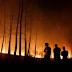 PKS Desak Pemerintah Tindak Tegas Perusahaan Asing Pembakar Hutan Riau