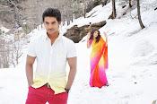 Pyar Mein Padipoyane Movie Photos Gallery-thumbnail-15