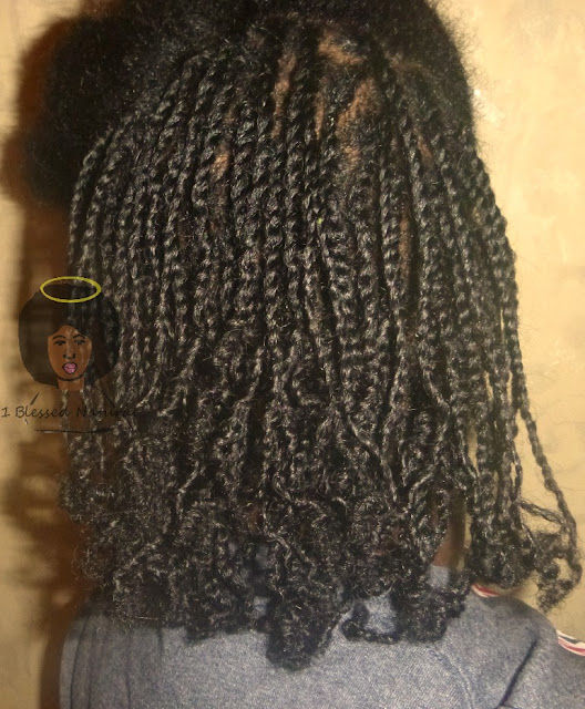 Copyright 2015 1BlessedNatural - mini twists 2