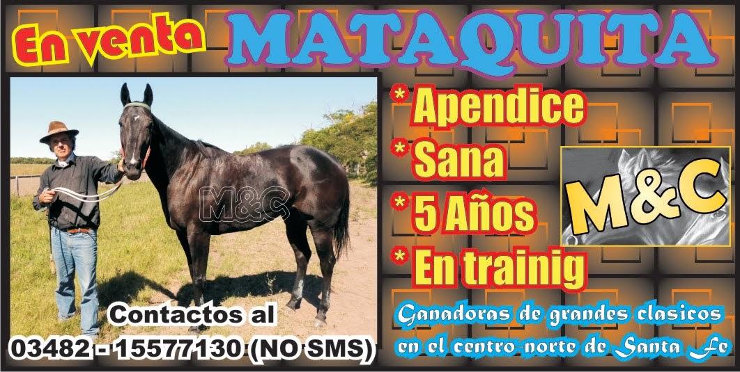 MATAQUITA - 01/10/14