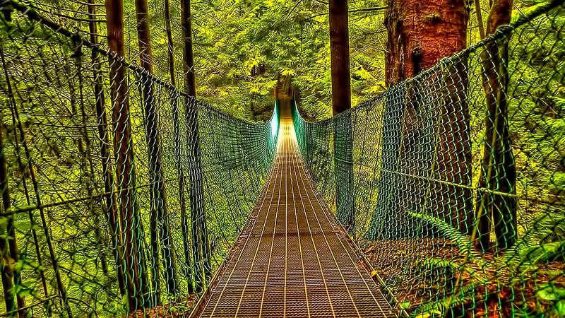 amazing world beautiful bridges wallpapers