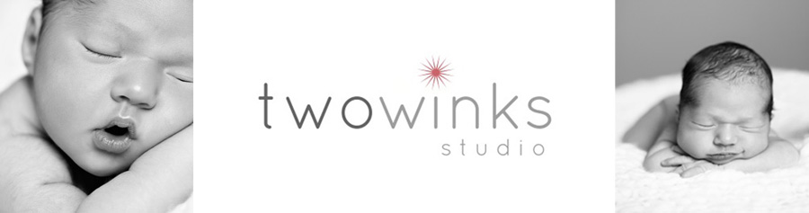 two winks studio
