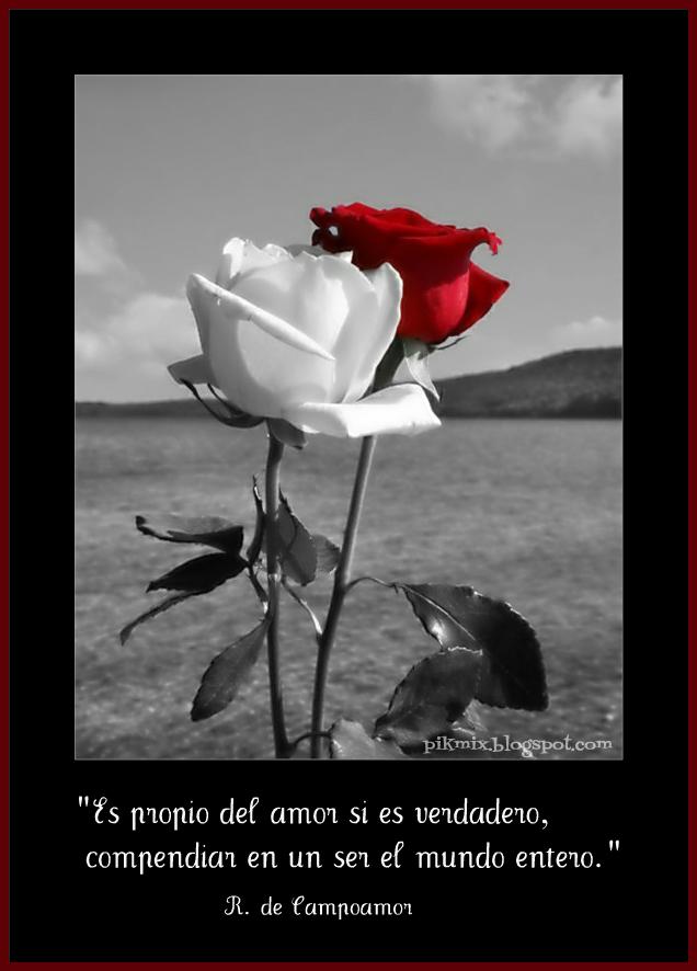 Propio del amor imagen con frase rosas