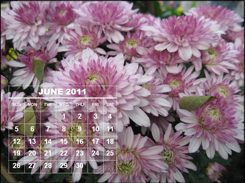 june 2011 calendar print. june 2011 calendar printable