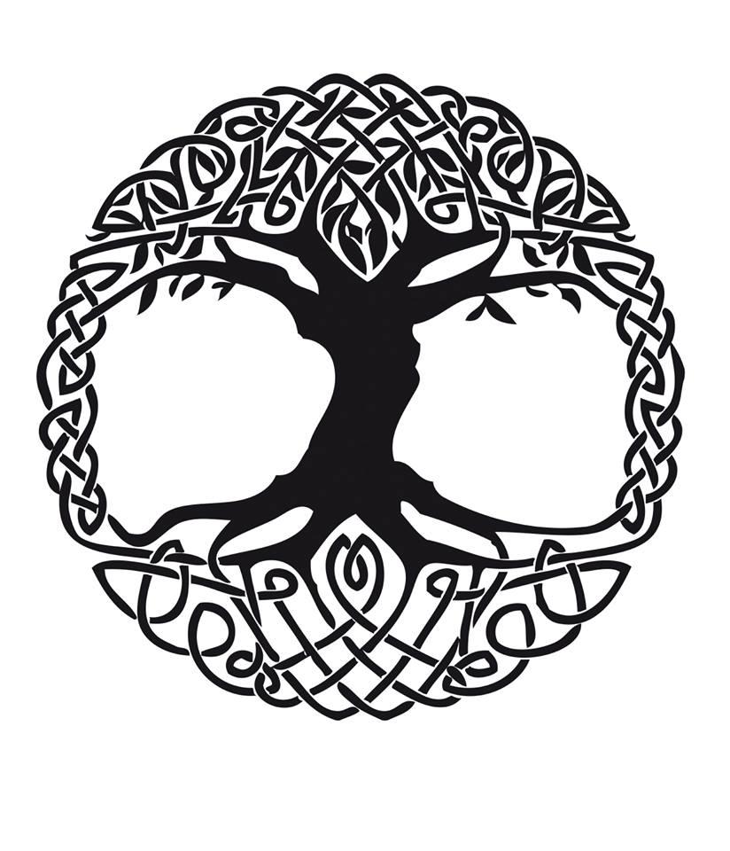 Hidromiel Valhalla