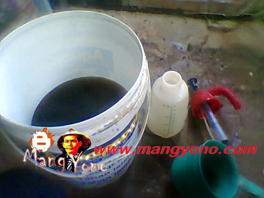 Pencampuran Ferto –DEK  dengan air bersih sesuai takaran