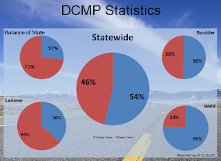 graphic showing disaster case management program stats