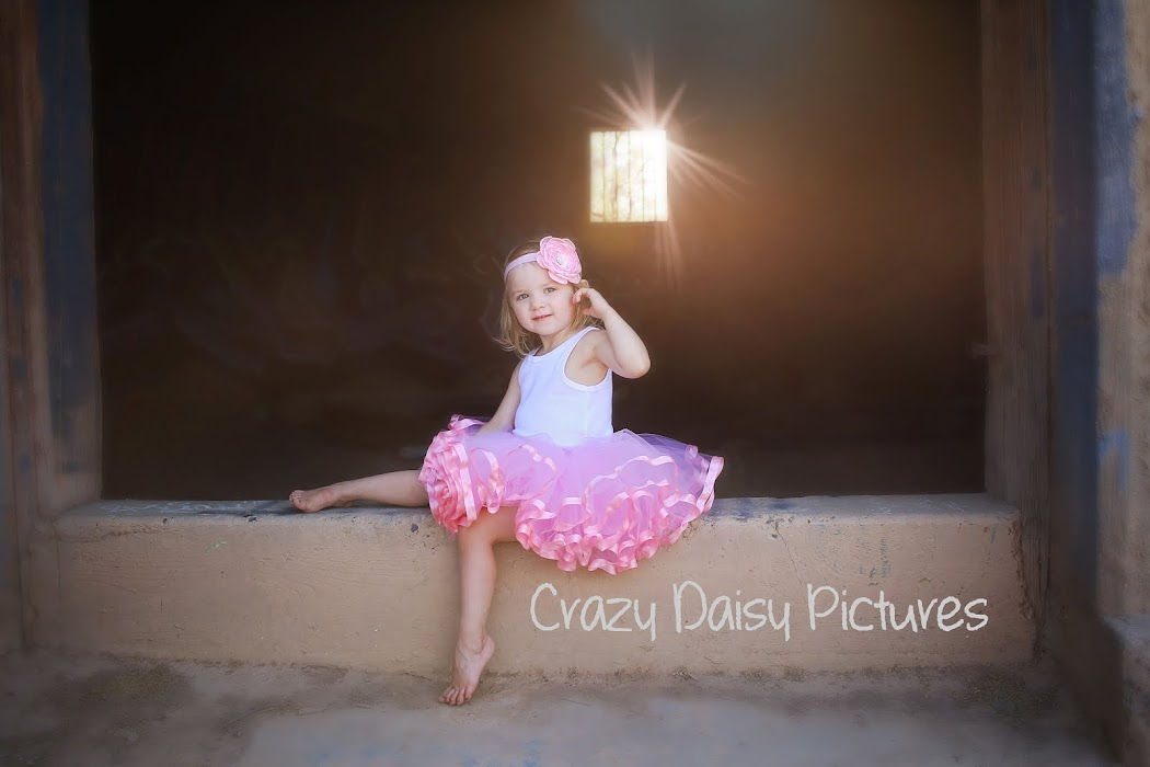 Crazy Daisy Pictures
