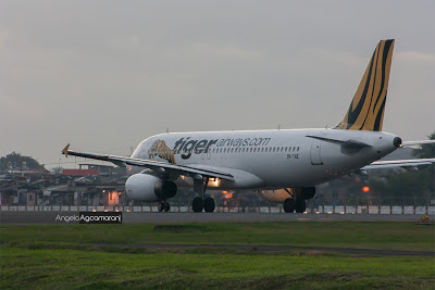 tiger airways philippines
